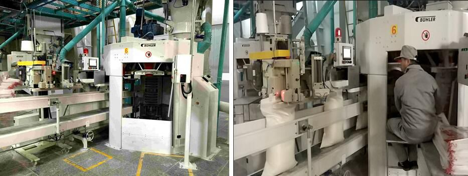 Wudeli Group 800bag/h automatic flour bagging and packaging project