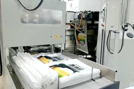 25kg flour packing machine